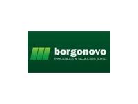 logo BORGONOVO INMUEBLES Y NEGOCIOS SRL