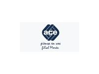 logo ACE - ACADEMIA DE COMPUTACION E IDIOMAS
